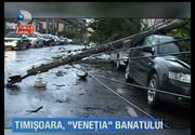 Furtunile puternice au facut prapad in tara! Zeci de case au fost inundate, animalele au fost luate de ape iar vietile mai multor oameni au fost puse in pericol