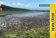Imagini apocaliptice surprinse pe albia raului Jiu. O insula de gunoaie acopera tot. Apa abia se zareste prin milioanele de pet-uri, gunoaie si animale moarte