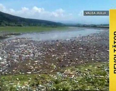 Imagini apocaliptice surprinse pe albia raului Jiu. O insula de gunoaie acopera tot....