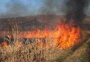 50 de hectare de teren agricol din Giurgiu au fost cuprinse de flacari. Pompierii de la Garda Mihailesti si de la Garda Calugareni incearca sa stinga focul