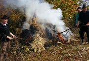 Mii de tone de lana sunt arse anual in Romania. Industria textila romaneasca se degradeaza de la an la an