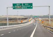 Lucrarile pentru autostrada Lugoj-Deva, blocate din cauza liliecilor