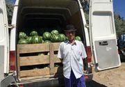 Agricultorii din Dabuleni, santajati de samsari: Ne acuza ca injectam pepenii cu substante de crestere