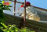 Muncitorii isi pun viata in pericol pe santierele romanesti. Au renuntat la casca de protectie si unii chiar si la haine