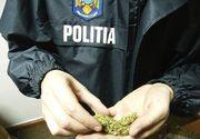 Grupare suspecta de trafic de droguri, prinsa la Bacau. Liderul traficantilor si-a pus mama sa portioneze drogurile
