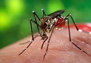 Ministerul Sănătăţii confirmă al doilea caz de import de virus Zika în România. Este vorba despre un băiat în vârstă de 10 ani