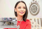 """Un constantean s-a laudat pe Facebook ca a omorat 25 de caini maidanezi in numele Andreei Marin: """"Le-am dat lapte cu otet!""""- Cum a reactionat ea"""