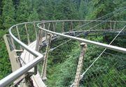 Cascada Tamina va fi tranformata complet. Autoritatile au un plan de reabilitare ambitios. Turistii vor putea admira natura de pe poduri suspendate, iar privelistea va fi spectaculoasa
