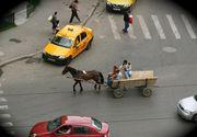 Cum scapam de carutele din Bucuresti? Autoritatile vor lua masuri drastice, dupa ce amenzile s-au dovedit inutile