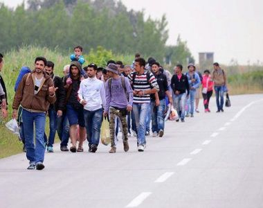 15 refugiati voiau sa intre ilegal in Romania. Grupul a fost depistat la frontiera de...