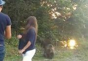 Selfie-urile cu ursi, noua distractie a soferilor de pe Transfagarasan. Oamenii nu s-au gandit nicio clipa ca puteau fi oricand atacati!