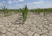 Meteorologii anunta seceta extrema in Doborgea, Crisana si in cea mai mare parte a Moldovei!