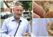 Un barbat a gasit un surub in painea cumparata dintr-un hipermarket din Capitala. Inspectorii de la Protectia consumatorului au deschis o ancheta