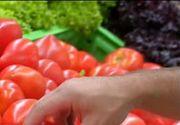 Agricultura romaneasca, un domeniu de activitate mort? Multe culturi risca sa dispara, in timp ce altele atrag tot mai multi bani. Care sunt cele mai profitabile afaceri