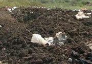 Descoperire macabra in Drobeta Turnu-Severin: doi barbati au gasit oseminte urmane in gunoi