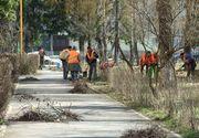 Primaria Sectorului 5 va acorda ajutoare sociale doar persoanelor care fac munca in folosul comunitatii