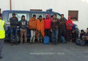 Migranti prinsi in timp ce incercau sa intre ilegal in Romania. Acestia, majoritatea copii, au fost gasiti ascunsi in culturile agricole