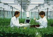 Statul ofera salarii mari pentru tinerii care vor sa se angajeze in domeniul cercetarii si inovarii in domeniul agricol