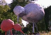 Timisoara, orasul cu cele mai urate creatii de arta contemporana din tara. Localnicii sunt indignati de ce vad pe strazi