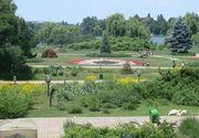 Primaria Capitalei a inceput curatenia in parcuri. Se pregatesc schimbari majore