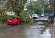 Furtunile au facut ravagii la Galati. Imagini apocaliptice cu masini zdrobite, copaci smulsi si canalizari aruncate in aer