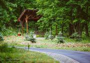 Muzeu botanic deschis în Parcul Dendrologic din Alba Iulia! Vara va exista o alee terapeutică pe care vizitatorii vor putea călca desculţi
