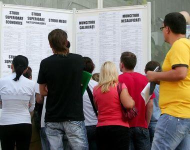 Situatie dificila pentru firmele din Romania. Peste 72% dintre ele nu pot sa-si ocupe...
