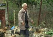 Fostul concubin al femeii din Dolj care a adunat zeci de caini in curte arunca bomba: Animalele sunt vandute in Germania pe bani grei