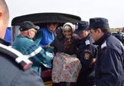 Batrana de 93 de ani, din Timis, salvata dupa 12 ore de cautari! Femeia s-a dus cu animalele la pascut si s-a ratacit in padure