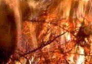 Zeci de oameni au aprins focul lui Sumedru. Traditie pastrata de sute de ani in ajun de Sfantul Dumitru