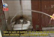 """Dezastru la Posta din Arad. Angajatii au intrat in greva din cauza conditiilor de munca: """"Paianjenii ne cad in cap, pe vasul de toaleta nici nu te poti pune"""""""