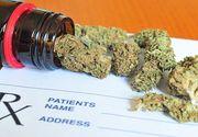 Australia, prima tara din lume care permite cultivarea de marijuana si cannabis in scop medicinal. Guvernul a reglementat acest lucru