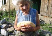 Guvernantii sar in ajutorul oamenilor cu pensii mici. Vor sa le ofere acestora paine gratuit in fiecare zi