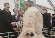 """Presedintele Iohannis a participat miercuri la deschiderea targului Indagra, unde l-a botezat pe mielul """"Tase"""""""