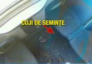 """Cum decurge o calatorie cu trenul pe centura feroviara a Bucurestiului. Podeaua vagoanelor abia se vede de sub stratul de coji de seminte, iar fumatul este """"la discretie"""""""