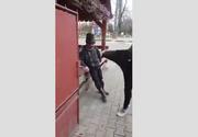 Imaginile revoltatoare din Romania. Un tanar loveste cu piciorul in cap un batran in stare de ebrietate. Oare de ce ai face asta?