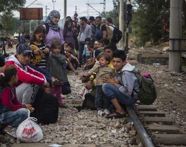 Politistii au descoperit 39 de refugiati sirieni intr-o localitate din Maramures