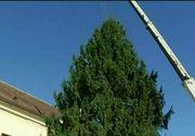 Atmosfera de Craciun la jumatatea lunii noiembrie. La Sibiu, bradul a fost instalat, iar in Capitala au aparut deja beculetele colorate