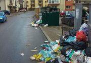 "Cea mai mare comuna din Romania, ingropata sub gunoi: ""Nu pot sa ies cu masina din parcare din cauza gunoaielor"""