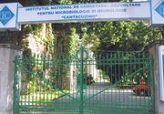 Vom avea din nou vaccinuri produse in Romania. Institutul Cantacuzino a inceput productia