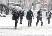Prognoza meteo. Vin ninsorile si in Bucuresti