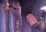 Stirile Kanal D de la ora 12:00 Un batran de 73 de ani a murit ars de viu in propria locuinta