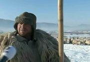 """Cosmarul alb da de furca gospodarilor! Animalele au indurat cu greu frigul: """"Ti-a inghetat blanita""""."""