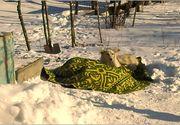 Un colonel din Barlad a murit de frig in fata casei, iar cainele i-a stat la capatai in tot acest timp. Animalul i-a fost loial pana in ultima clipa