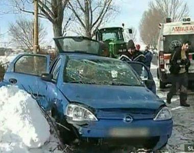 Inconstienta criminala. Au taiat un copac de la marginea drumului exact peste o masina...