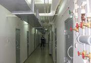 Imagini cu sobolani pe holurile Centrului de Arest Preventiv Dolj, postate pe internet de sindicalisti din IPJ