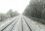 Mai multe trenuri au avut intarzieri de peste o ora din cauza conditiilor meteo. Zeci de masini, blocate in zapada