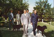 Nicolae Ceausescu facuse o obsesie pentru labradorul primit cadou in Anglia! Botezat Corbu, cainele era tratat numai cu biscuiti englezesti adusi cu posta diplomatica
