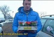 Cativa tineri au plantat flori in craterele uriase de pe DN 73. Au avut saci de pamant, dar nu au fost de ajuns sa astupe gaurile