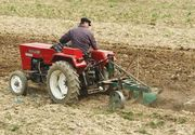 Veste buna pentru fermieri. Ministerul Agriculturii va acorda subventii de la 1 martie